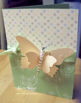 Butterfly magnet card