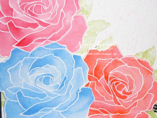 Watercolored roses up close