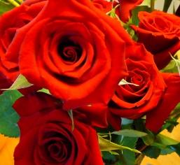 Valentine flowers 2011