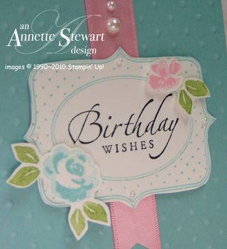 Upclose baby blossoms card