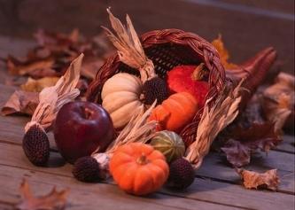 Thanksgiving1_2